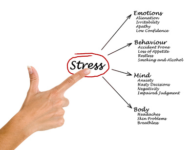 Diagram of stress consequences